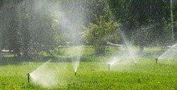 Impianto di irrigazione a pioggia
