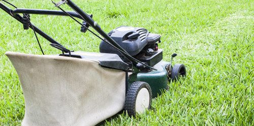 Equipment for professional yard work and maintenance in Wahiawa, HI