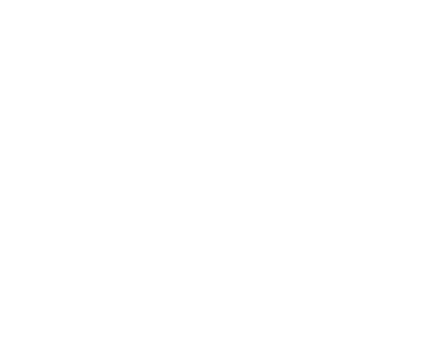 Member of the Pennsylvania Bar Association