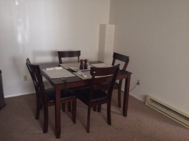 Cozy and comfortable one bedroom apartment in Oxford, OH