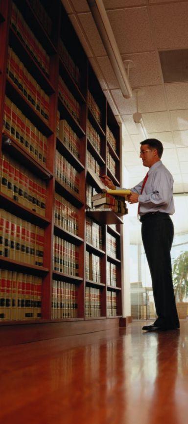 A family law expert in Bay of Plenty