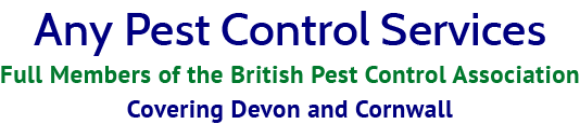 Any Pest Control Services logo