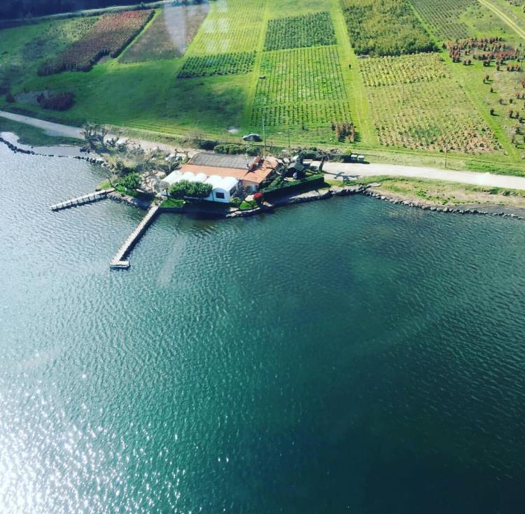 Trattoria Da Giggetto, Lago di Bolsena, Trattoria Viterbo,