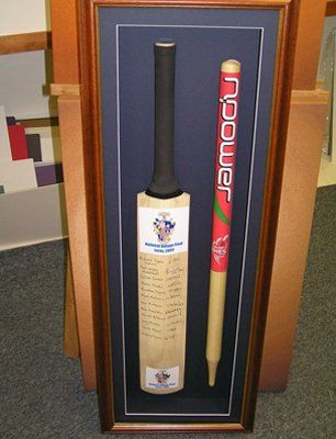 cricket bat and wicket