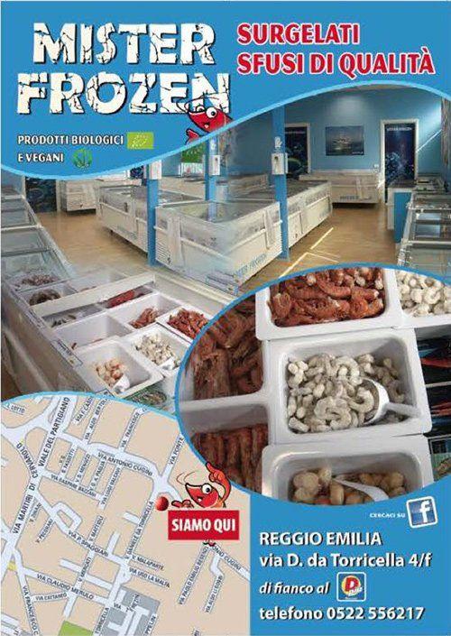 Volantino Mister Frozen, surgelati sfusi di qualitá, a Reggio Emilia