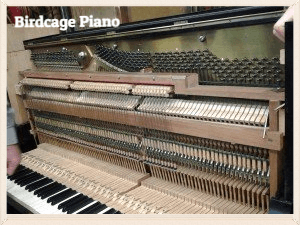 Birdcage Piano