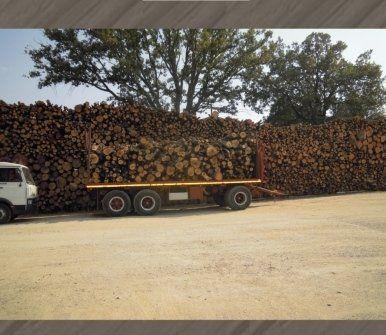 lavorazione legnami
