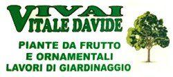 Vivai Vitale Davide - Logo