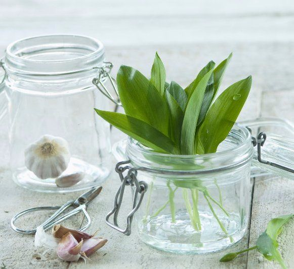 Garlic and herbs in glass mason jars used for enema therapy by Hertfordshire Colonics