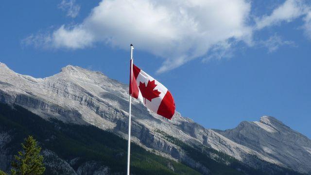 WHOLESALE CANNABIS IN CANADA