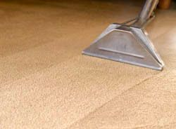 Cleaning carpet in Christchurch