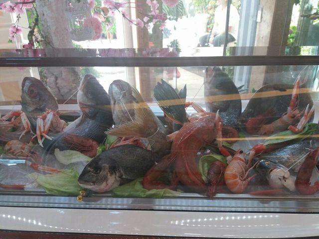 vetrina di ristorante con crostacei e pesce fresco