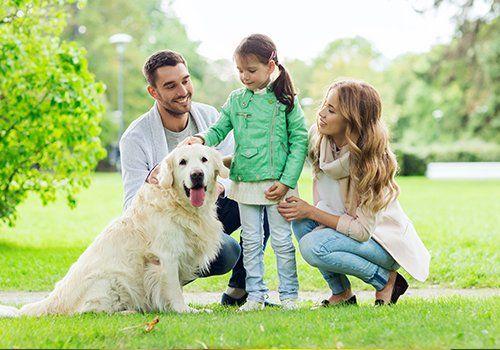 Famiglia con cane nel parco