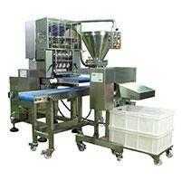 RC300B ravioli machine