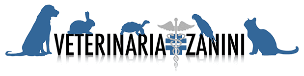 Ambulatorio Veterinario Zanini - LOGO
