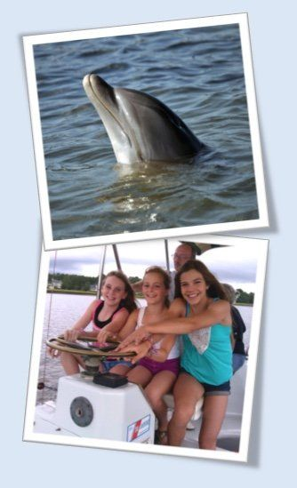 Our Hilton Head Dolphin Cruise and Tour is a true dolphin watching discovery adventure.  Enjoy our day cruise eco tour and see wild bottlenose dolphins, pelicans, egrets, osprey, bald eagles and more on the dolphin tour adventure experience of a lifetime.