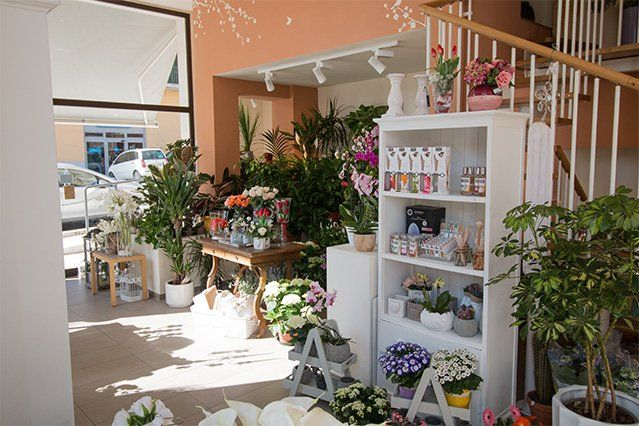 Uno scaffale bianco con vasi di fiori e diffusori
