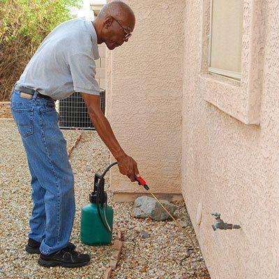 l'impresa di pulizie offre pulizia e mantenimento di giardini