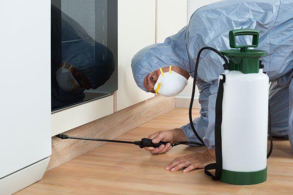 Facciamo la lucidatura dei pavimenti e garantiamo un risultato professionale.