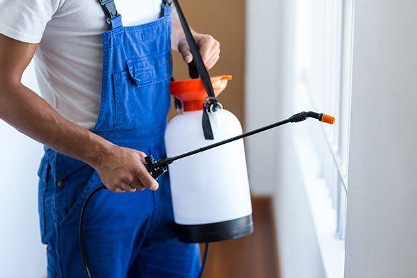 Sezione intermedia di lavoratore di controllo di parassiti con spruzzatore in piedi a casa