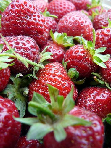 Swistak Farm Strawberries