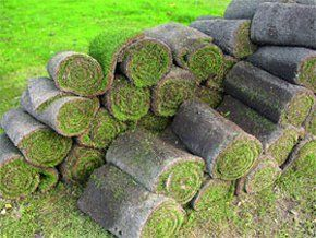 Turf supplies beverley first choice turf topsoil for First choice mobile site