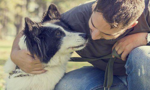 un ragazzo vicino a un cane bianco e nero