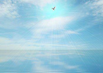 servizi funebri, trasferimento salme, composizione salme