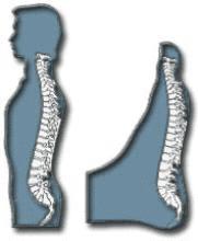 Spinal Reflexology