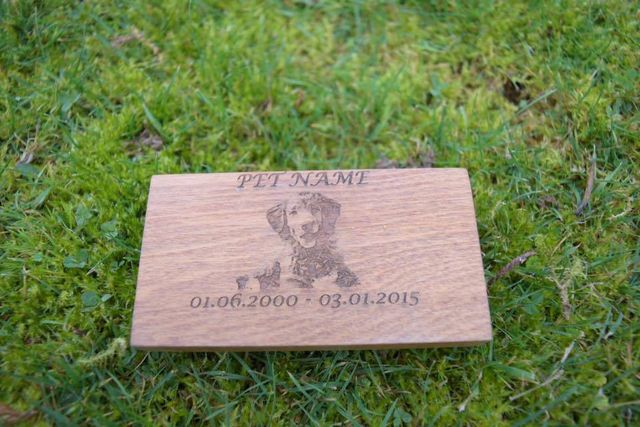 personalised pet picture