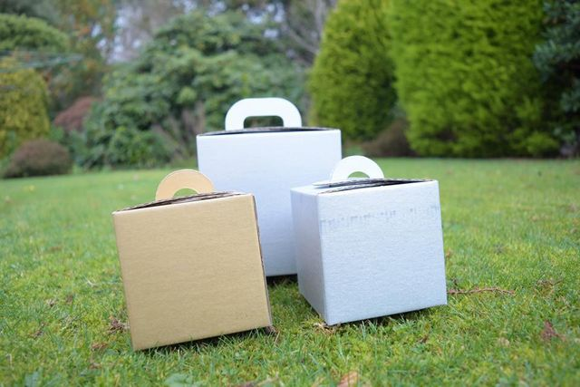 Gold and Silver boxes