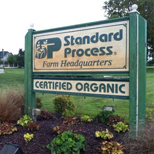 Image result for standard process