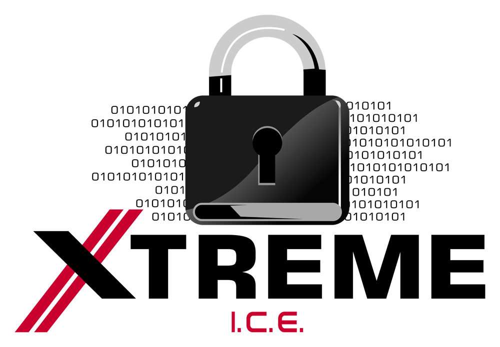Xtreme Ice Cyber Security Information Technology Training Service