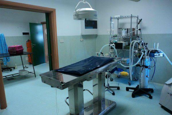 Sala operatoria destinata alla chirurgia generale e ortopedica,