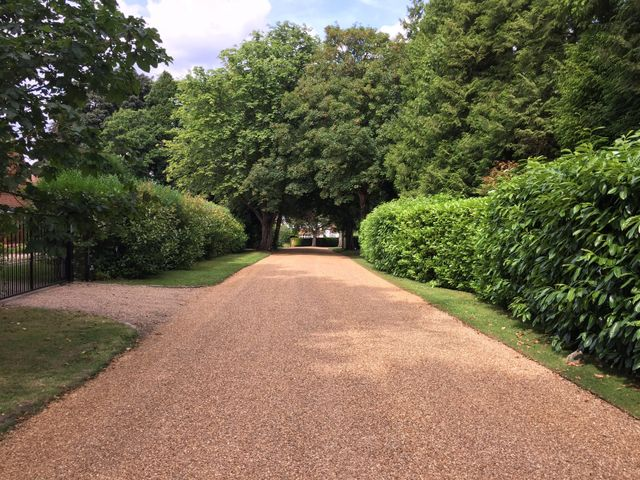 Driveway flanked by lawns and trees