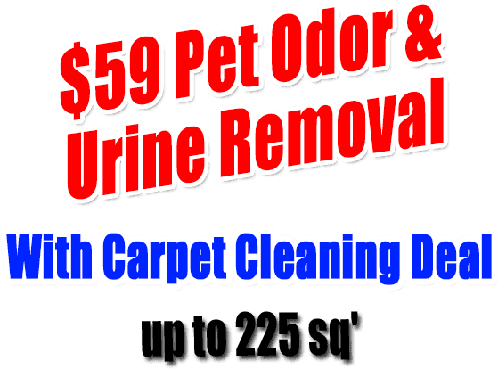 Carpet Cleaning Services St Louis Mo