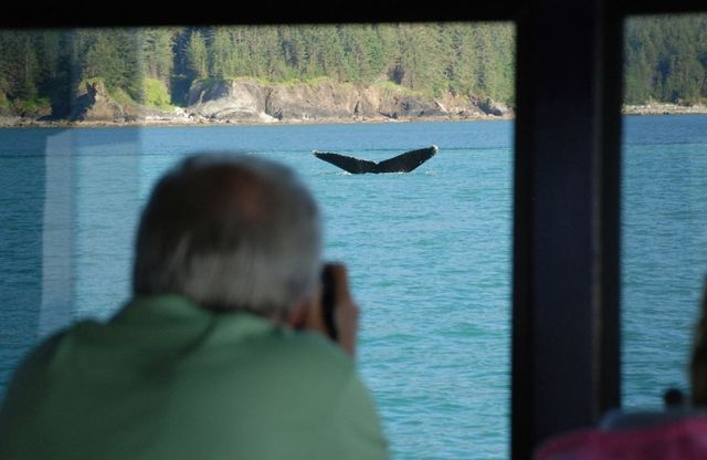 Man on one of our whale watching tours in Alaska