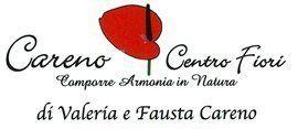 CARENO CENTRO FIORI logo