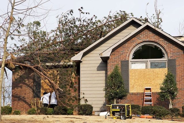Will Your Home Insurance Pay for the Removal of a Dangerous Tree?