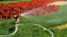 impianti di irrigazione, irrigatori automatici, irrigazione giardini