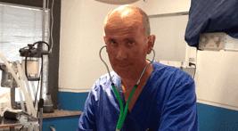 veterinario dott. Menconi
