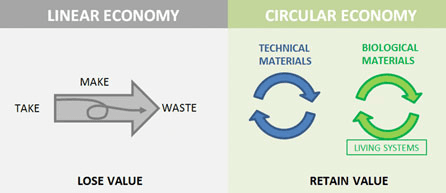 Linear and circular economy