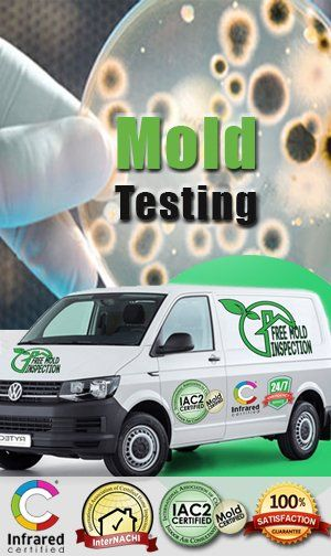 Mold Testing   Certified Lab Mold Testing