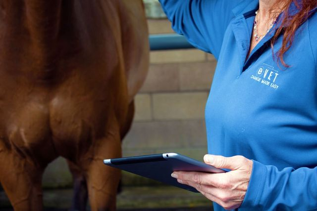 electronic vet for horse owners