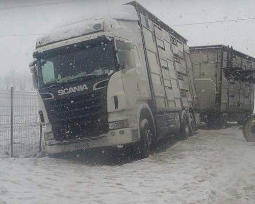 Camion bloccati nella neve