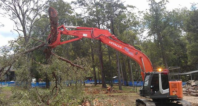 jackson tree services land clearing