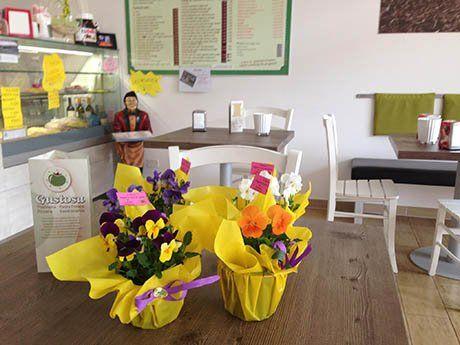 Locale arredato in bianco e simpatica ricezione dove cestos gialli di fiori danno il benvenuto
