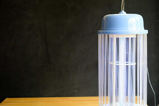 Mosquito trap light dark background