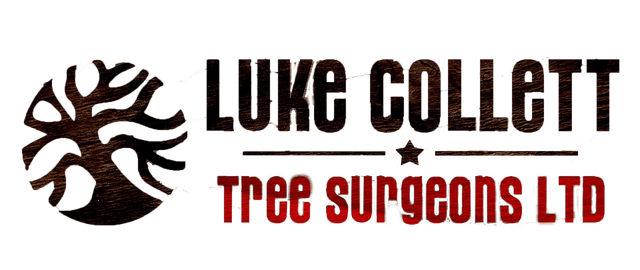 Luke Collett Tree Surgeons Ltd company logo