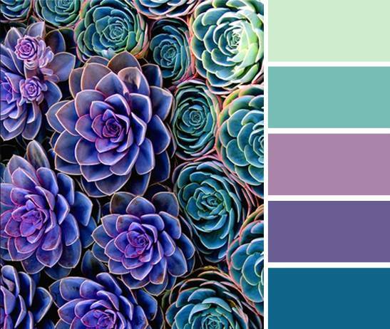 colors picked from a plant